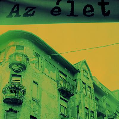http://zselinsky.com/files/gimgs/16_azelet.jpg